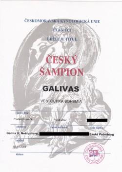 03.11.2009 Vestochka Bohemia Galivas