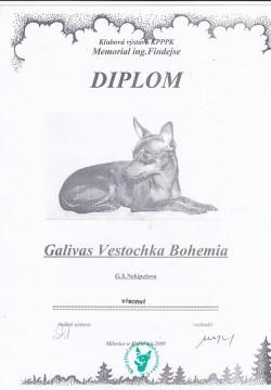 06.06.2009 Vestochka Bohemia Galivas