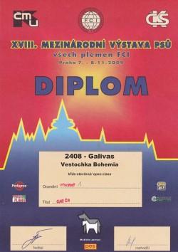 08.11.2009 Vestochka Bohemia Galivas