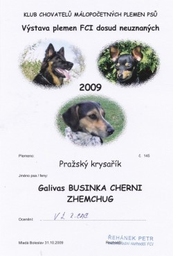 31.10.2009 Businka Cherni Zhemchug Galivas
